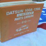 DATSUN + lit 010
