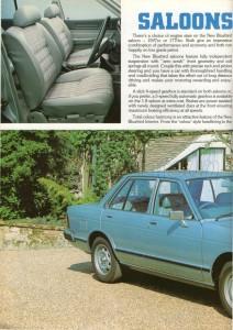 bluebird uk 1980 (11)