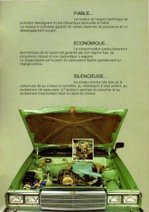 laurel-belgique-385