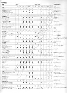 Z31 JAPON 808