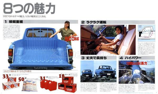 sunny-pickup-b120-4