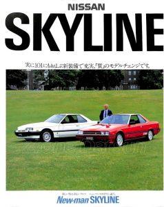 skyline-newman-rs