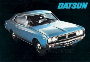 cat 1973 uk (4)