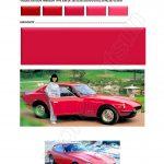 110 COULEUR ROUGE 110DATSUN ANNEES 1970